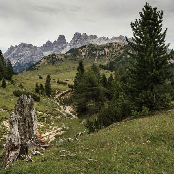 Alto Adige/Sudtirol (2017)