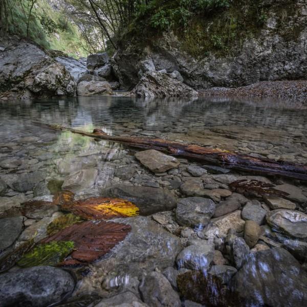 Sentiero del fiume